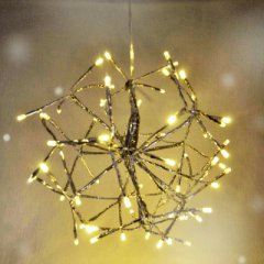 Ein Zweig als Lichterkette